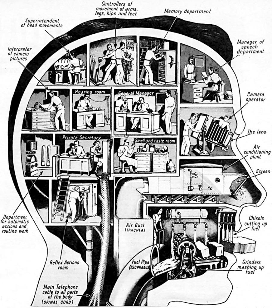 1836_AF_Maschine_Gehirn