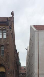 Blick in die ***gasse. Die Gestaltung der Giebelseiten des Neubaus orientiert sich am alten Gegenüber und bedient sich zeitgenössicher Bautechnik. (Bild: Wilfried Dechau)