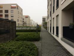 Ein Erdgeschoss-Bereich: Fenster und Balkone vor öffentlichen Wegen und dem Abfall-Shelter – die Dachgeschosse bieten erkennbar beste Wohnqualität. (Bild: Ursula Baus)