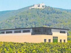 Fotomontage als Beratungsvorlage für die Stadt | Weingut Kriegs