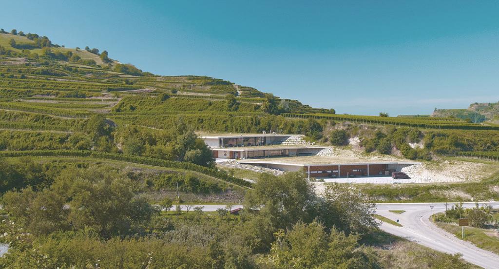 Architekturpreisgekrönt: Weingut Franz Keller Schwarzer Adler in Vogtsburg Oberbergen am Kaiserstuhl. Architekten: geis & brantner, Freiburg (Bild: Tom Gundelwein)