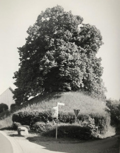 Evessen (Bild: Michael P. Romstoeck)