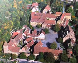 Blick von Westen auf die Klosteranlage (Bild: MfM Baden_Württemberg)