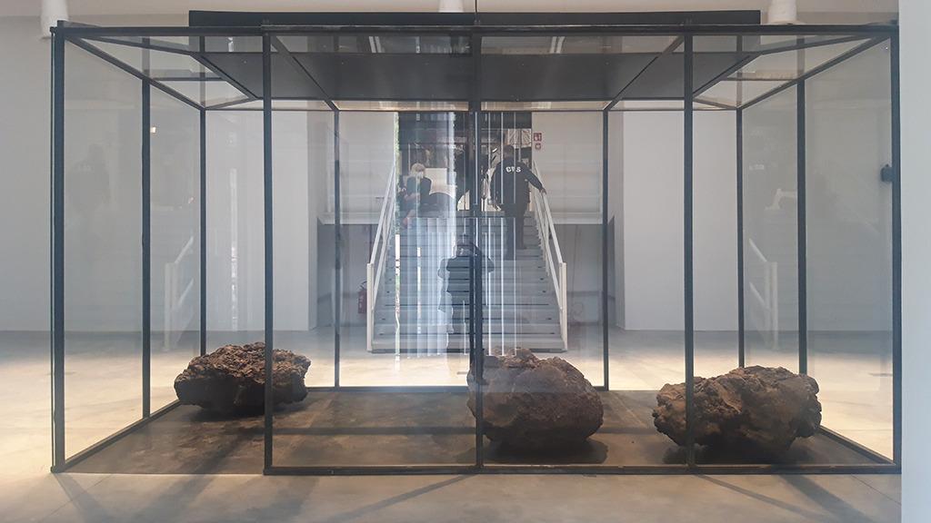 Hibiskusduft im Hauptpavillon (Bild: Nikolaus Bernau)