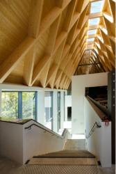 Treppe hinab zum großen, lichten Untergeschoss (Bild: Wilfried Dechau)